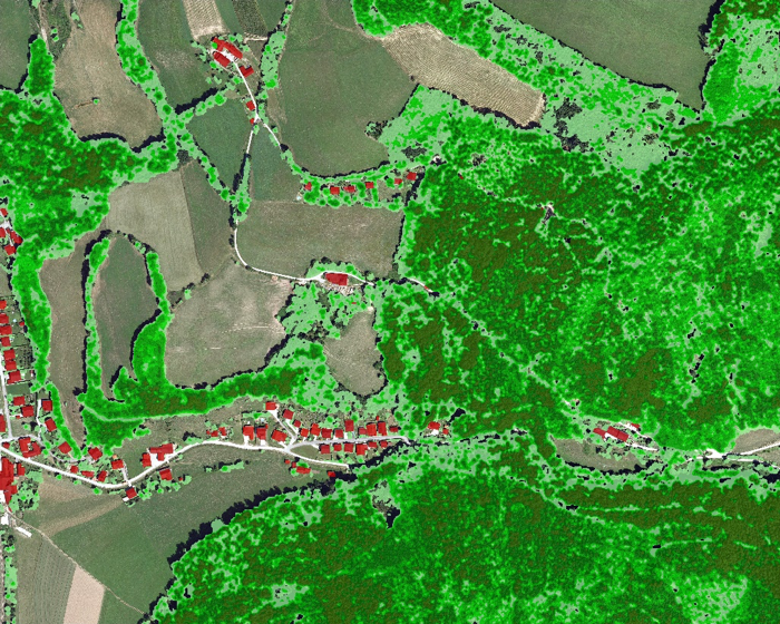 ecog-vegetation-gis